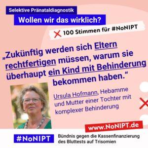 """Dunkelblaue Schrift auf rosa Hintergrund: """"Zukünftig werden sich Eltern rechtfertigen müssen, warum sie überhaupt ein Kind mit Behinderung bekommen haben."""" Ursula Hoffman, Hebammeund Mutter einer Tochter mit komplexer Behinderung. Neben dem Zitat steht ein Foto von einer Frau mit mittellangen blonden Haaren und grüner Brille. Über dem Zitat steht: Selektive Pränataldiagnostik – Wollen wir das wirklich?""""100 Stimmen für #NoNIPT. Unter dem Zitat steht: #NoNIPT, Bündnis gegen die Kassenfinanzierung des Bluttests auf Trisomien – www.NoNIPT.de"""